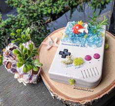 Welcome to the world of Pokemon Gameboy Pokemon, Nintendo, Pokemon Craft, Clay Pokemon, Pokemon Painting, Pokemon Birthday Cake, Geek Home Decor, Pokemon Terrarium, Nerd Crafts