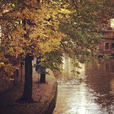 Herfst Oude Gracht