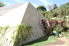 pavilhão Tunga