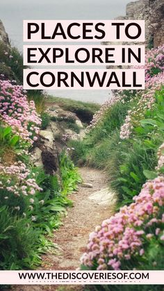 Brilliant things to do in Cornwall, England! Cornwall has some of the best beaches in England, not to mention delicious food and lots of history. Here's how to plan the perfect trip St Ives I Penzance I Newquay I Perranporth I Cornwall Cornwall England, England Uk, Best Beaches In England, Honeymoon In England, Beautiful Places In England, Places To Travel, Places To See, Things To Do In Cornwall, Cornwall Beaches