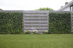 Wissel een houten schuttingdeel af met een rek en laat dit begroeien met klimplanten voor een strakke én natuurlijke schutting.