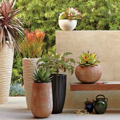 Container gardening tips for those who live in small spaces. #landscaping