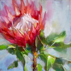 KAREN'S CANVAS: Two little protea pics