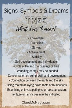 Rich with symbolism pay attention when Tree shows up in your life, dreams or readings! Reading Tree, Palm Reading, Dream Psychology, Psychology Facts, Symbols And Meanings, Tarot Card Meanings, Dream Interpretation Symbols, Facts About Dreams, Revelation Bible
