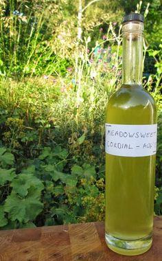 090514 meadowsweet ~ Meadowsweet cordial