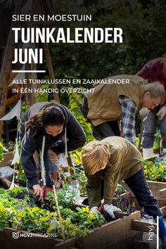 De 'tuinkalender juni' geeft je inzicht voor alle tuinklussen voor moestuin, siertuin, balkon, terras en gazon. Met gratis zaaikalender! Vegetable Garden, Garden Plants, Juni, Garden Maintenance, Garden Planning, Garden Inspiration, Gardening Tips, Insight, Calendar