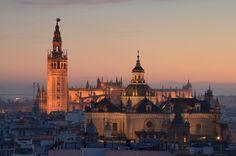Catedral e iglesia del Salvador en Sevilla. Vista desde las Setas de la Encarnación.