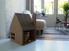 casa carton gato 1