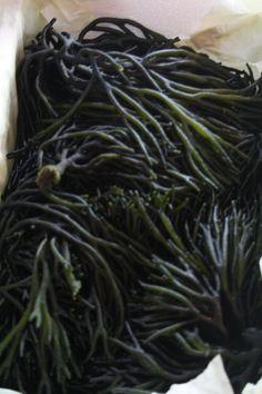 El mar nos ofrece tesoros gastronómicos sin límites.El hípster que vende algas lo sabe bien. :-) http://blogs.lasprovincias.es/historiascondelantal/2015/06/06/el-hipster-que-vende-algas-en-ruzafa/#comment-1709 .