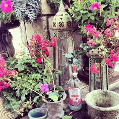"@tracyporter_poeticwanderlust's photo: ""happy lovely Saturday xx #tracyporter #poeticwanderlust #countrygarden #countryliving #californiacountryside"""