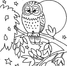 cute owl printable coloring pages - Cute Owl Printable Coloring Pages