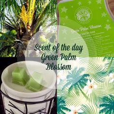 #scentsy #australia #greenpalmblossom