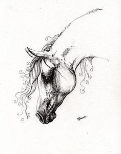Arabian Horse Tattoo Ideas Ideas Drawing wallpaper