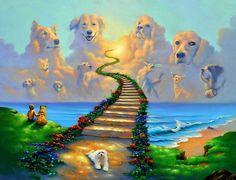 El cielo de nuestras mascotas. - Taringa!