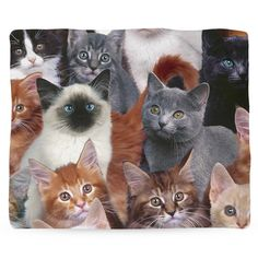 Cats for Days Blanket