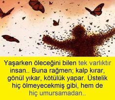 FB_IMG_1478556548109.jpg (800×703)
