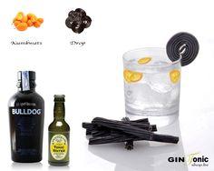 BLOG - Gin Tonic recepten