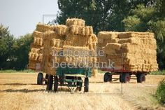 I used to help haul hay with my Daddy and my brothers on hay trailers like this. I helped stack the bales. This was the worst work.