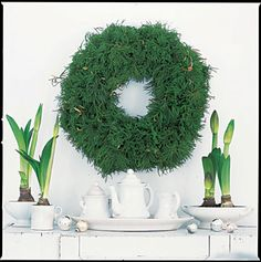 green and white christmas - love the simplicity of this, I would not leave it this simple but I love this look -