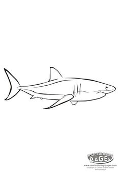 73 Best Shark Coloring Pages Images On Pinterest
