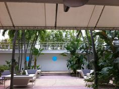 The Albion, a production friendly hotel. Miami Beach.