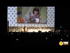 The Walking Dead Comic Con Panel 2014