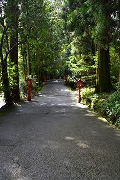 箱根神社 2015.8