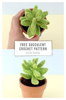 cactus with flowers Free Sedum Adolphii (Golden Glow) Succulents Crochet Pattern Ollie + Holly Crochet Gratis, Crochet Patterns Amigurumi, Cute Crochet, Crochet Bags, Crochet Animals, Crochet Flower Patterns, Crochet Flowers, Crochet Edgings, Loom Patterns