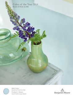 Benjamin Moore Breath of Fresh Air 806, our 2014 Color of the Year.
