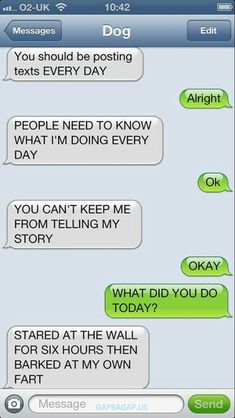 Top 9 #FunnyTexts Collection ft. #FunnyDogs #funnyanimals