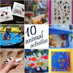 10 Animal Activities on It's Playtime!
