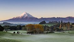 13 Reasons To Be Proud Living in New Plymouth - Blaber Blogger