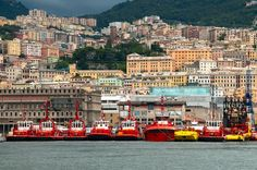 Genova, Liguria Ital  Genova, Liguria Italy  https://www.pinterest.com/pin/361836151287331838/   Also check out: http://kombuchaguru.com