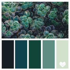 Green Color Pallete, Dark Color Palette, Teal Green Color, Color Schemes Colour Palettes, Green Paint Colors, Green Color Schemes, Nature Color Palette, Green Palette, Bedroom Color Schemes