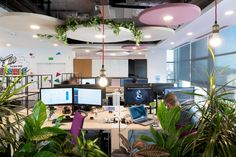 We thrive in the jungle of the city! Do you like the new design of our office?