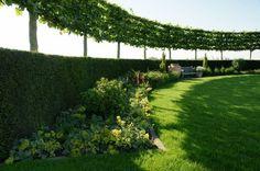 De mooiste tuinontwerpen gefotografeerd. Zilver >1000 m² 2011