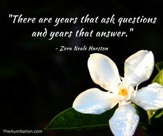 """""""There are years that ask questions and years that answer."""" - Zora Neale Hurston"""
