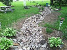 I added 16 hostas of different variety to my landscaping just by separating my existing hostas that we're over grown throughout my yard. We added them to the border of my dry creek bed. Path Edging, Dry Creek Bed, Garden Landscaping, Stepping Stones, Paths, Garden Ideas, Beds, Diy Projects, Gardens