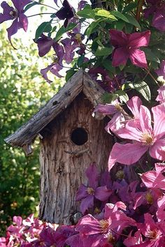 Raw wood bird house