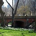 """Driprock Arch, Central Park, NYC.  """"With its red brick façade and Gothic-detailed balustrade, Driprock Arch is a visual standout. Completed in 1860, it originally allowed passage for the bridle path, lost with the expansion of Heckscher Playground in the 1930s."""""""