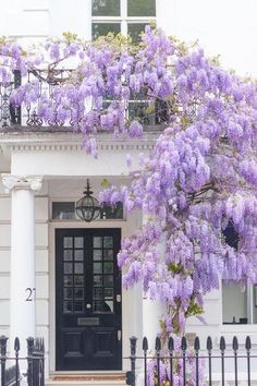 Travel Photography Discover London Photography - Wisteria in Kensington Spring in London Purple Blossoms England Travel Decor Large Wall Art Gallery Wall Lavender Aesthetic, Purple Aesthetic, London Fotografie, Beautiful Flowers, Beautiful Pictures, House Beautiful, Beautiful Places, London Photography, Art Photography