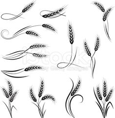 Wheat ornament royalty-free stock vector art