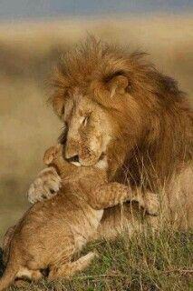 Ich beschütze dich