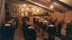 Barriques full of black gold: Balsamic Vinegar from Modena