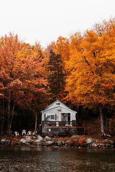 in Gartland Lake Getaway Camp! Autumn Scenery, Autumn Nature, Autumn Trees, Autumn Leaves, Autumn Cozy, Autumn Park, Autumn Aesthetic, Fall Wallpaper, Autumn Photography