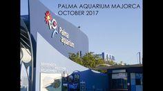 Palma Aquarium walk around