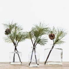Effortlessly add a little greenery and a vintage vibe to your holiday decor with our Felix Bottle with Pine Pick. Choose from three distinct apothecary style bottles, each accented with a faux pine branch secured in resin. Christmas Greenery, Christmas Decorations, Box Decorations, Christmas Branches, Liquor Bottle Crafts, Christmas Time, Xmas, Seasonal Decor, Holiday Decor