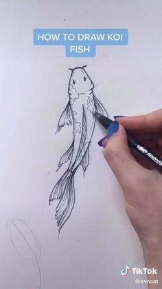 Art Drawings Sketches Simple, Pencil Art Drawings, Drawing Sketches, Cute Drawings, Drawings Of Fish, Drawing Techniques, Art Sketchbook, Doodle Art, Art Tutorials