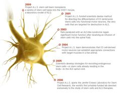stem cell therapy for ALS Brown Adipose Tissue, Motor Neuron, Hormone Replacement Therapy, Stem Cell Therapy, Neurons, Pain Management, Differentiation, Stem Cells, Clinic