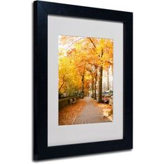 Trademark Fine Art Fall On The Street Matted Framed Art by Ariane Moshayedi, Black Frame, Size: 11 x 14, Multicolor